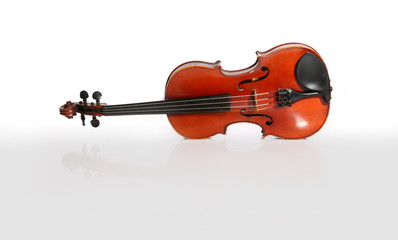 Violin isolated on white and reflected