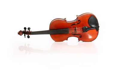 violin isolated on a white background and reflection.