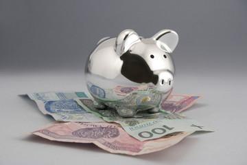 Skarbonka pieniadze EURO