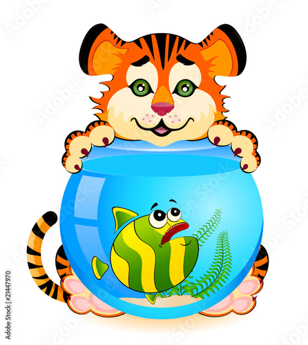 tiger with little colorful tropical fish in aquarium