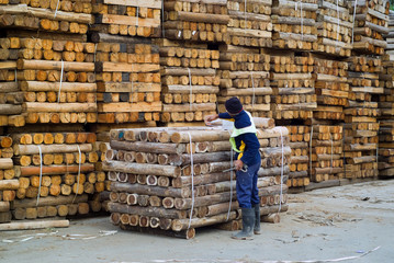 Wood factory worker