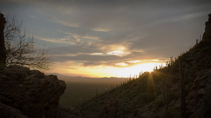 Twilight Arizona Desert Sunset Clouds with Cactus Saguaros
