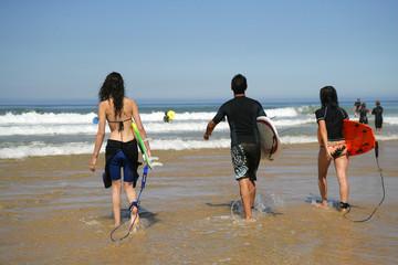 Groupe d'amis à la mer avec planches de surf