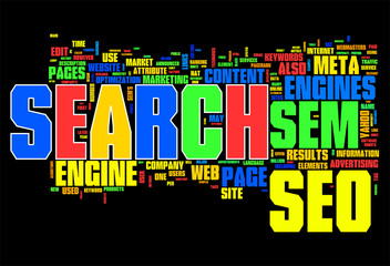 Search Engine on World Wide Web
