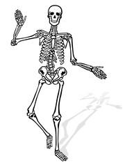 Skelett winkend