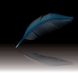 Blue feather - detailed vector illustration isolated on black