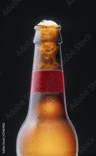 Bottle of beer - 21464982
