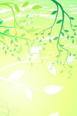 Spring branches background