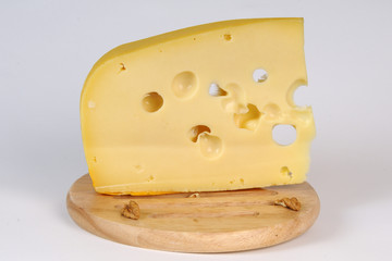 closeup with cheese studio isolated
