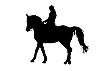 vector illustration of horsewoman and the horse