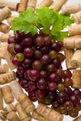 uvas y corcho
