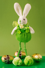 funny easter bunny and chocolate eggs on green background