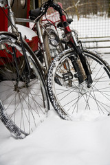 Bicycles parked in a snowdrift