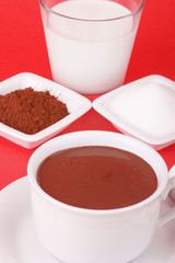 A cup of hot chocolate and its ingredients