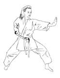 Self defense - karate poster