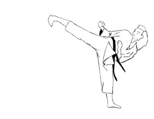 Karate leg punch