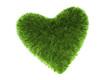 Herz für Natur