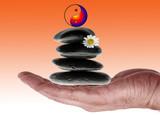Alternative Heilmethode und Wellness poster
