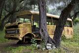 Fototapeta autobus - żółty - Autobus