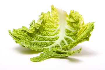 Abstract Cabbage Leaf