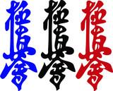 MARTIAL ARTS - KARATE KYOKUSHINKAI CHINDAN poster