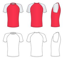Raglan sleeve t-shirt (vector illustration)