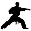 MARTIAL ARTS punch.Vector.