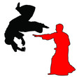 MARTIAL ARTS - AIKIDO