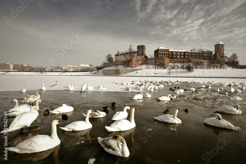Wawel Castle - Landmark of Krakow  in a winter scenery - 21562364