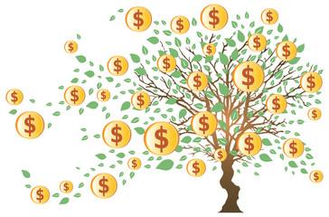 Arbre à Dollars et Feuilles Vertes