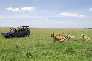 National Park Masai Mara