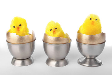Easter chicks on egg cups over white