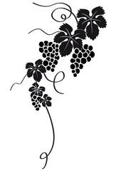 racimo de uvas silueta