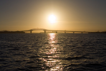 Auckland Harbour Bridge Sunrise