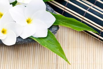 Fleurs de frangipanier et sets en bambou