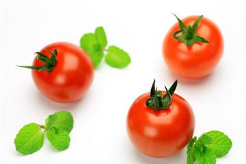mint and mini-tomato