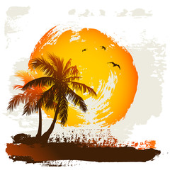 Sun and palm