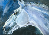 Blue horse watercolor painted.