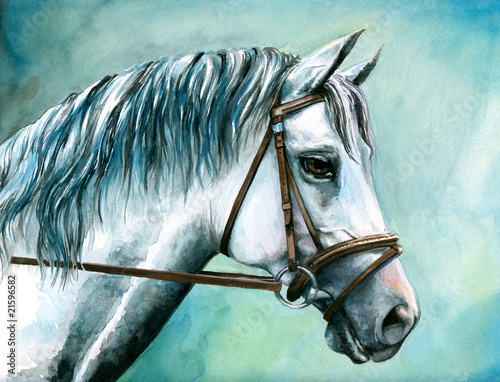 Obraz w ramie Gray horse watercolor painted.