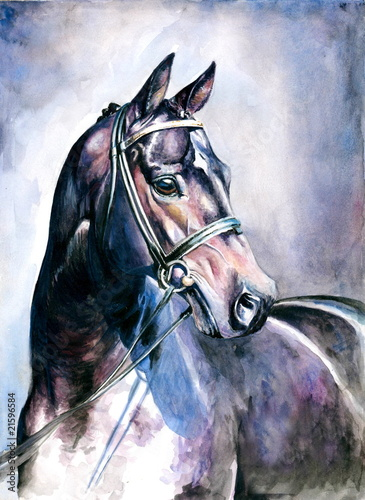 akwarela-malowane-czarny-kon
