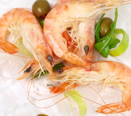 Macro shot of prawns