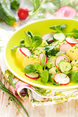 Potato salad with radishes and cucumber