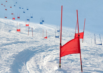 Ski gates with parallel slalom