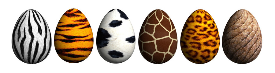 Safari-Eier