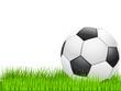 Fußball auf dem Rasen