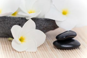 Fleurs blanches de frangipanier esprit zen