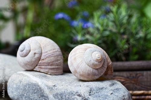 Zwei schneckenh user als gartendeko von babsi w for Gartendeko auf rechnung