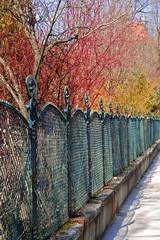 Zaun beim Park