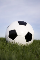 soccer ball on grass vertical