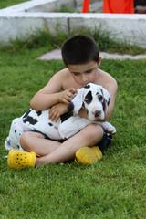 enfant caressant son jeune dogue allemand
